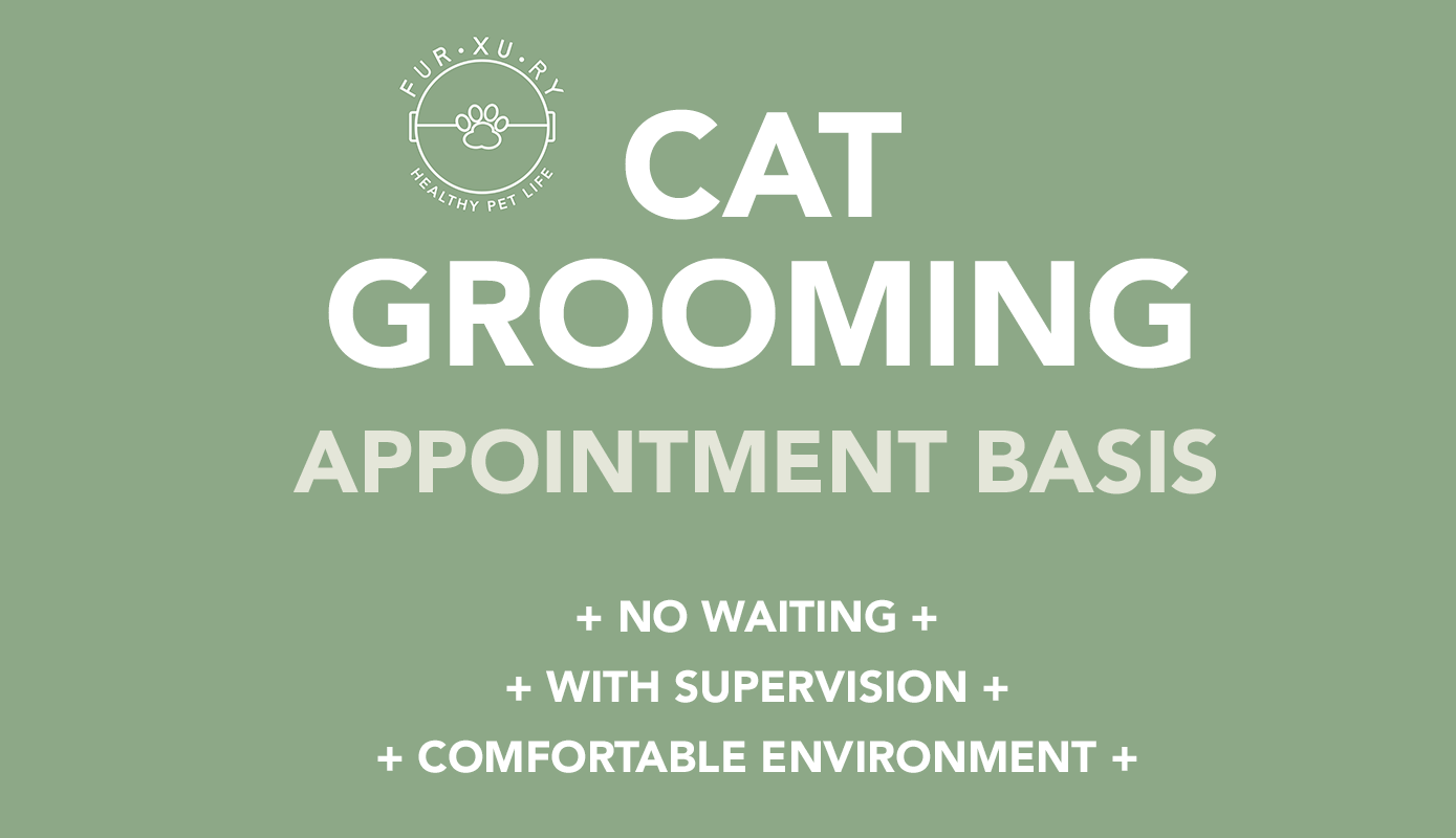 dog-grooming-banner.png
