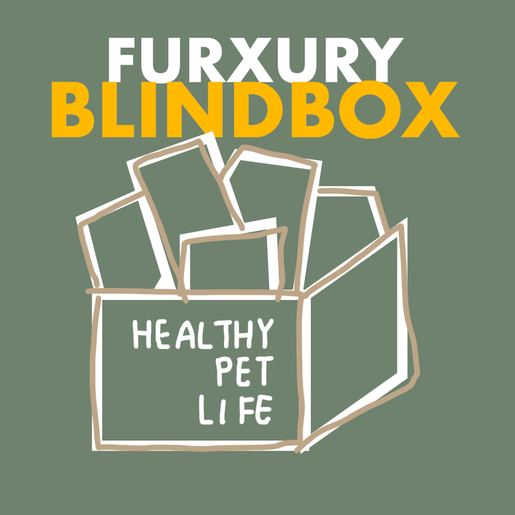blindbox-productcover1.png
