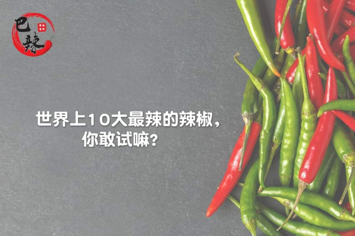 World's Top 10 Hottest Chilli