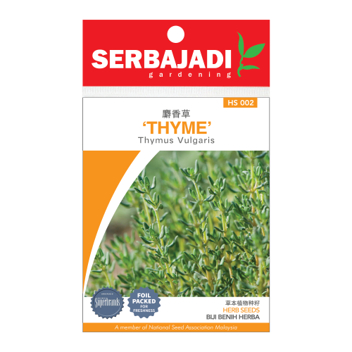 thyme-2 (front)-500x500.png