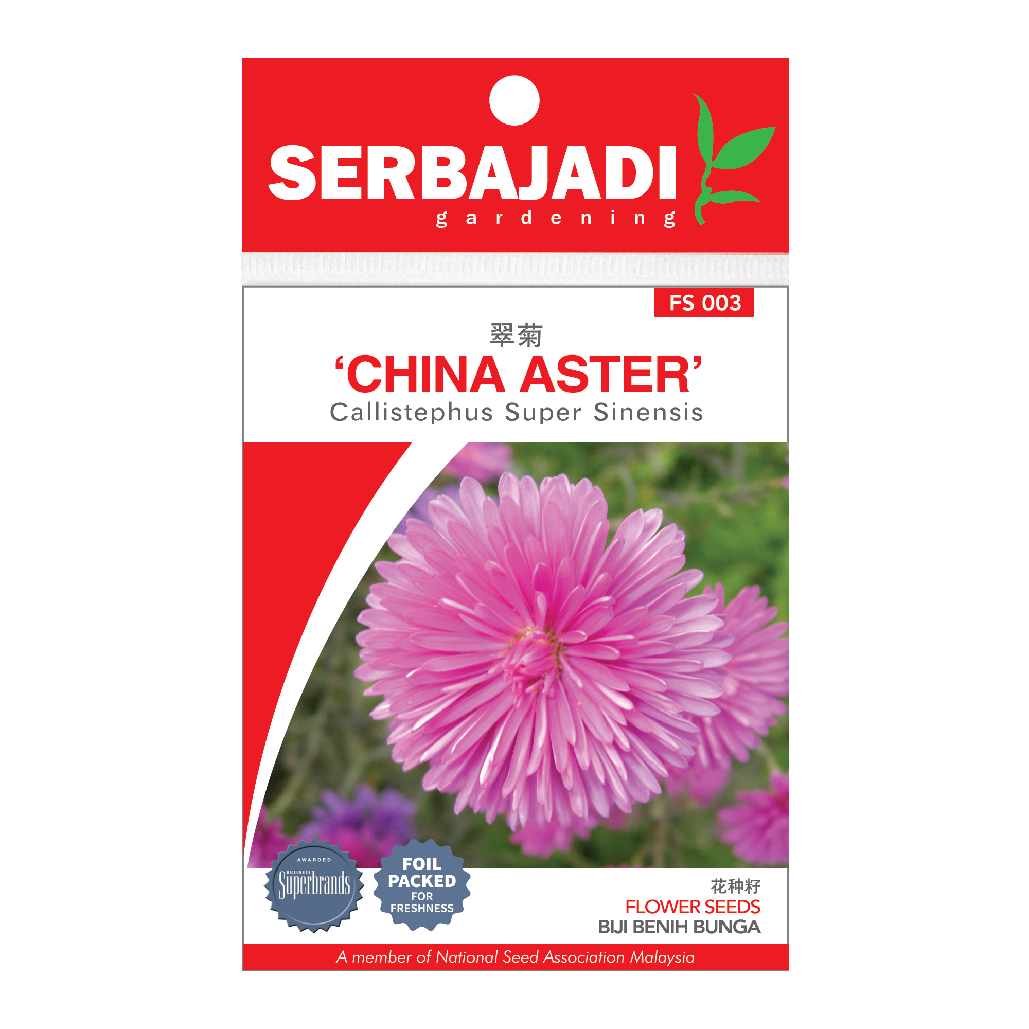china aster-3 (front).png