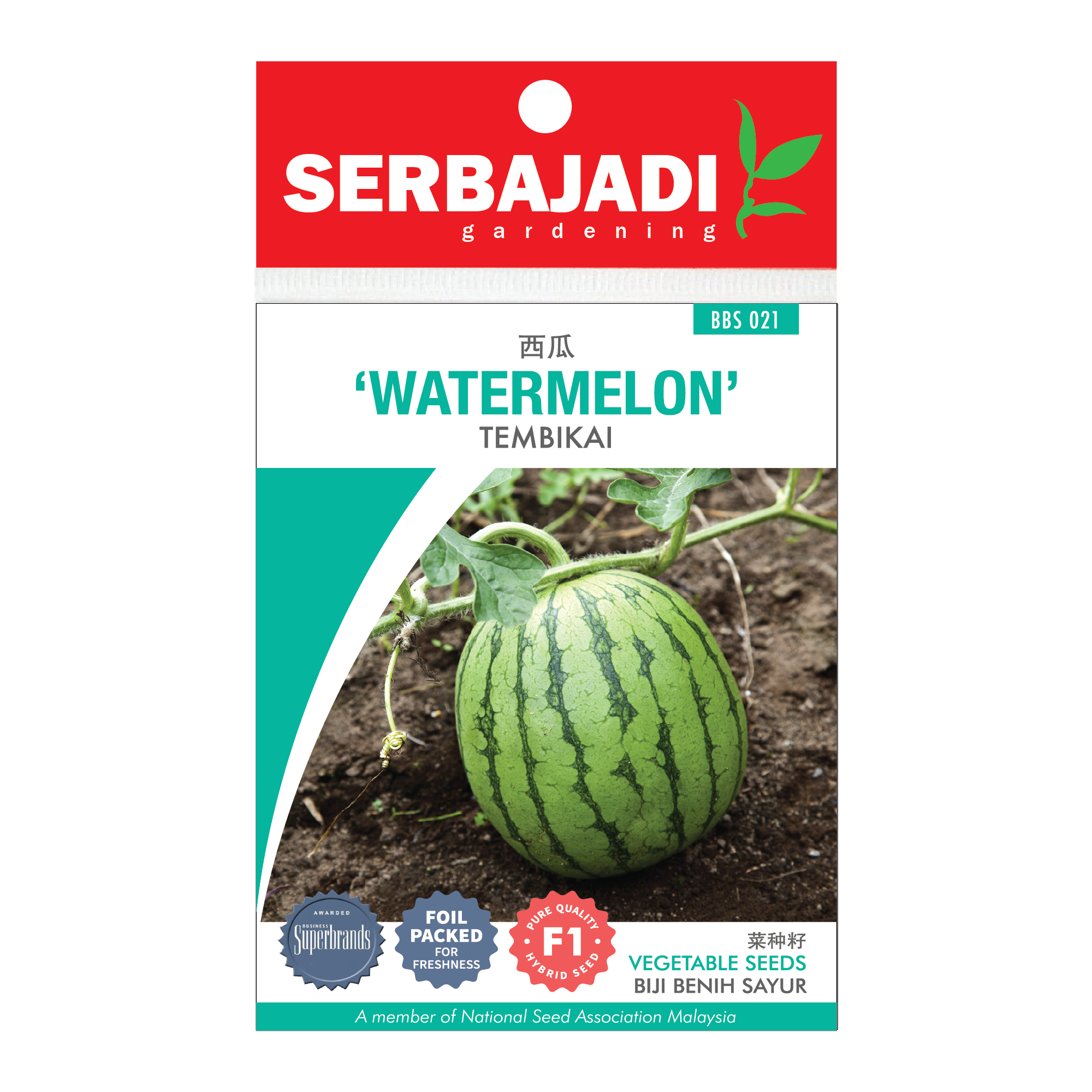 watermelon-21 (front).png