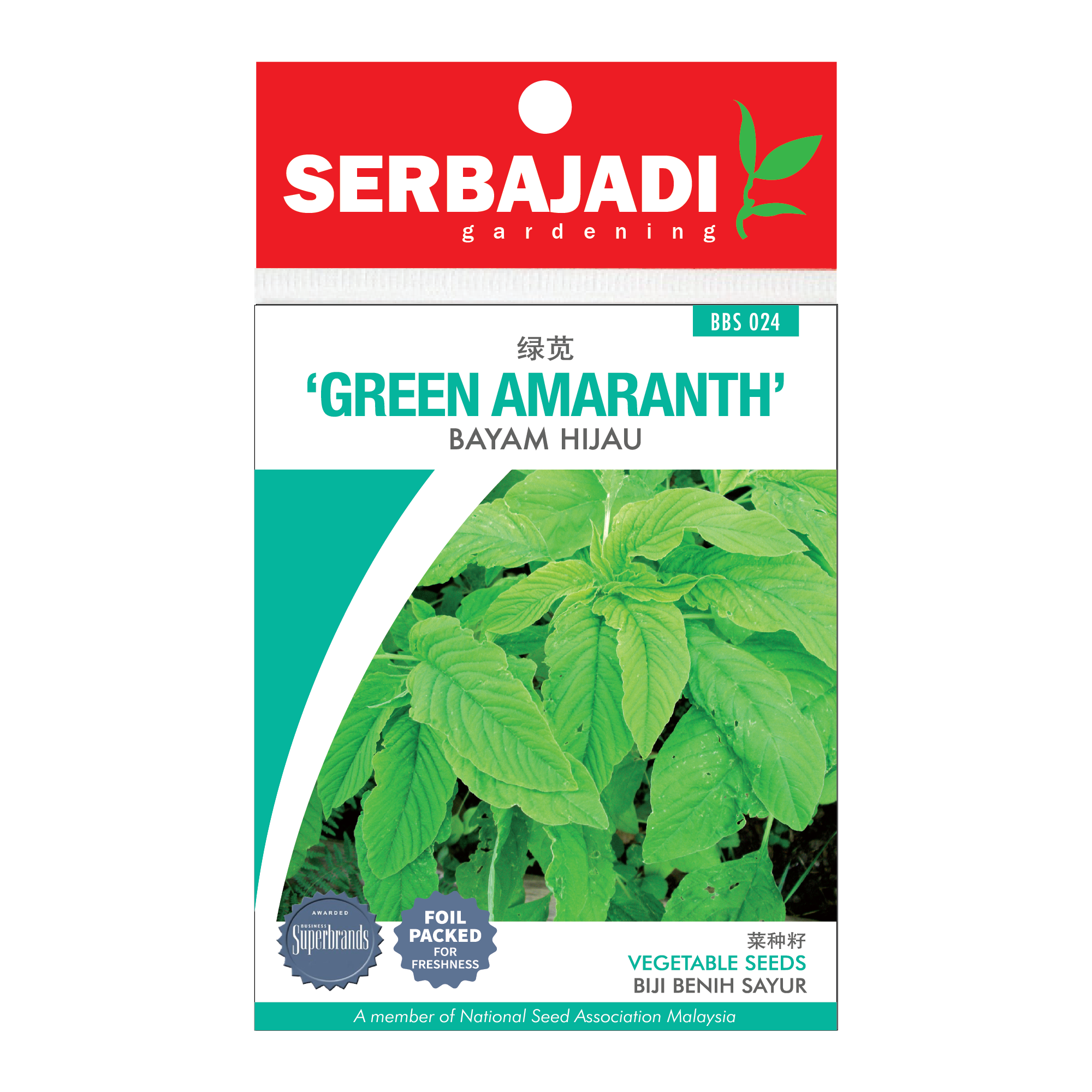 green amaranth-24 (front).png