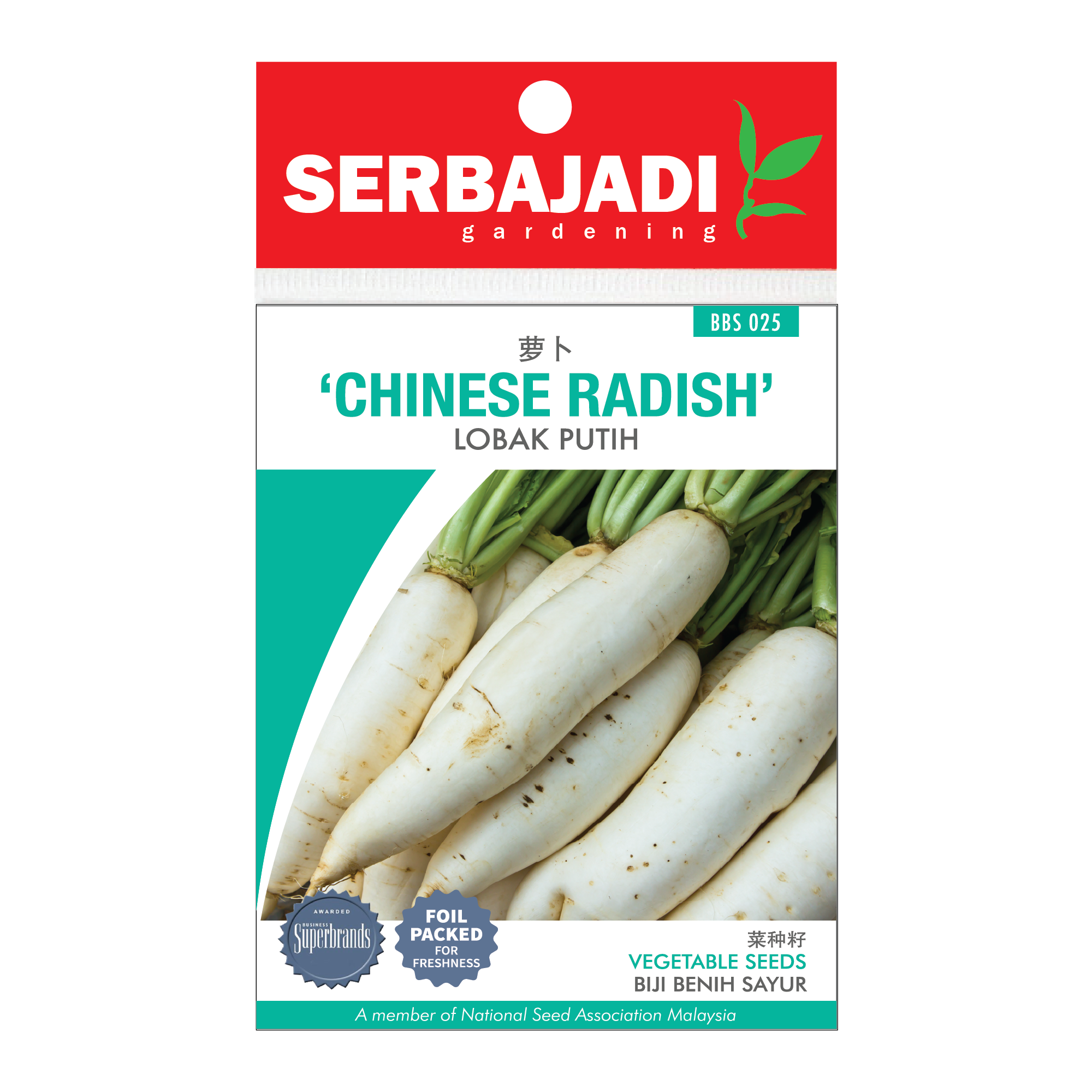 chinese radish-25 (front).png