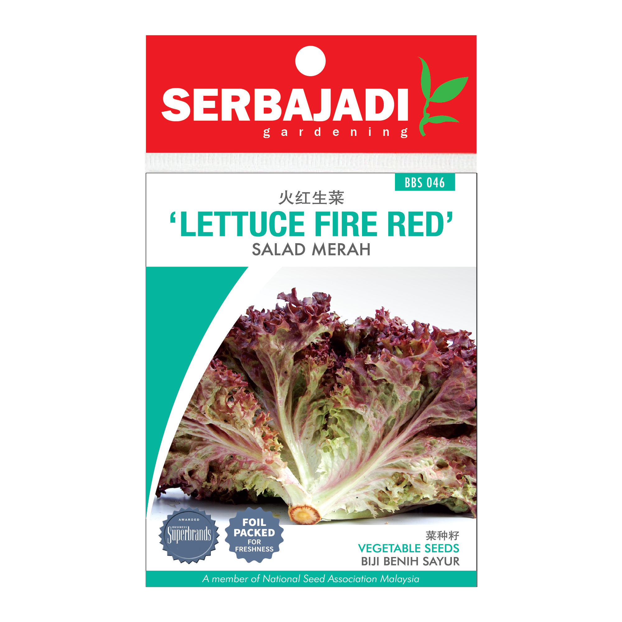 letture fire red-46 (front).png