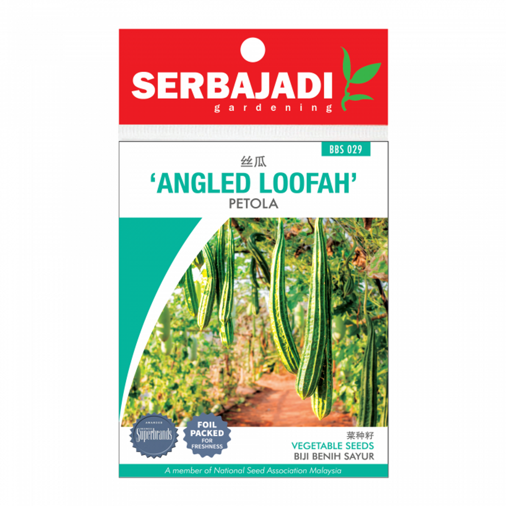 angled%20loofah-29%20(front)-700x700