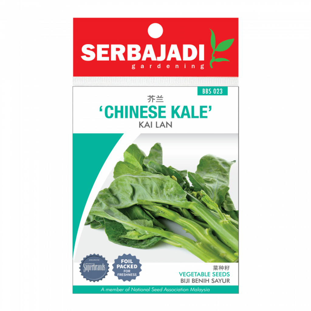 chinese%20kale-23%20(front)-700x700