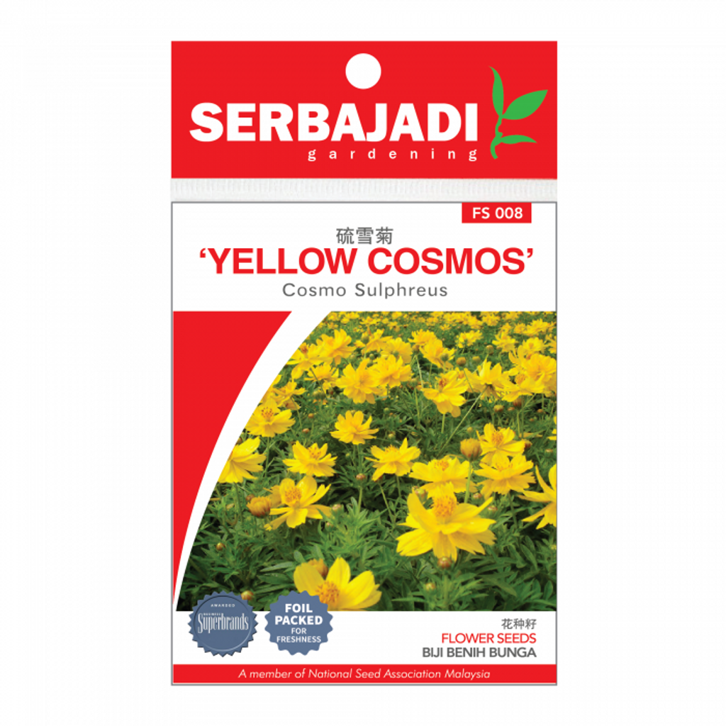 yellow%20cosmos-8%20(front)-700x700