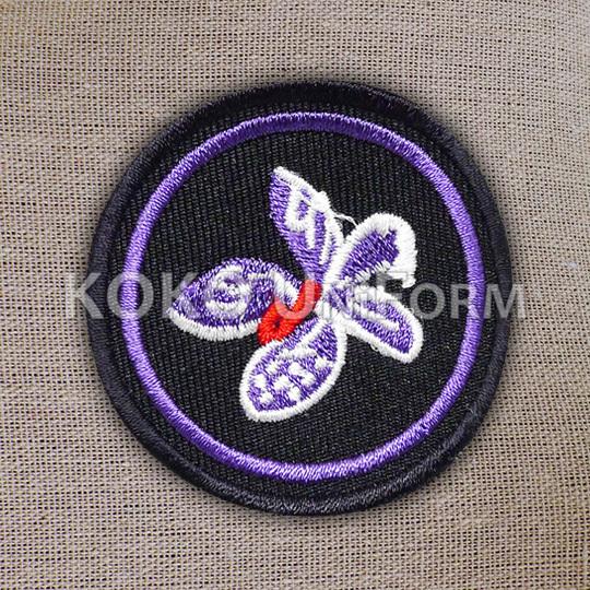 Pandu Puteri Badge 4.jpg