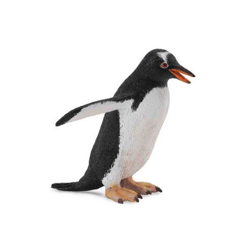 巴布亞企鵝.jpeg