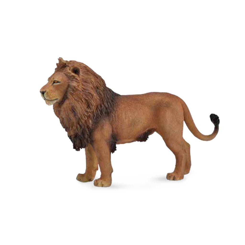 非洲雄獅 14x9cm.jpeg