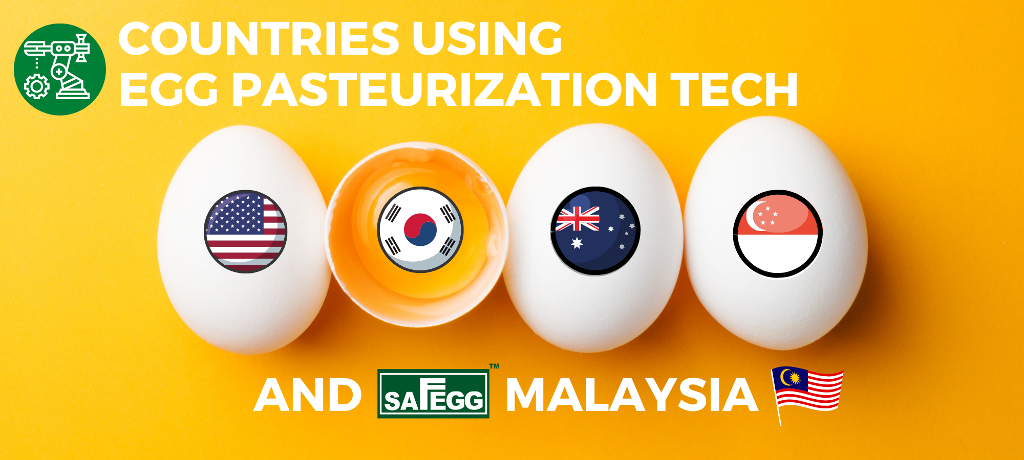 Countries Using Egg Pasteurization Technology