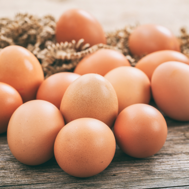 Eggshipper by Safegg™   YOUR EGG-CELLENT DAILY ESSENTIALS - THE CLASSIC PASTEURIZED