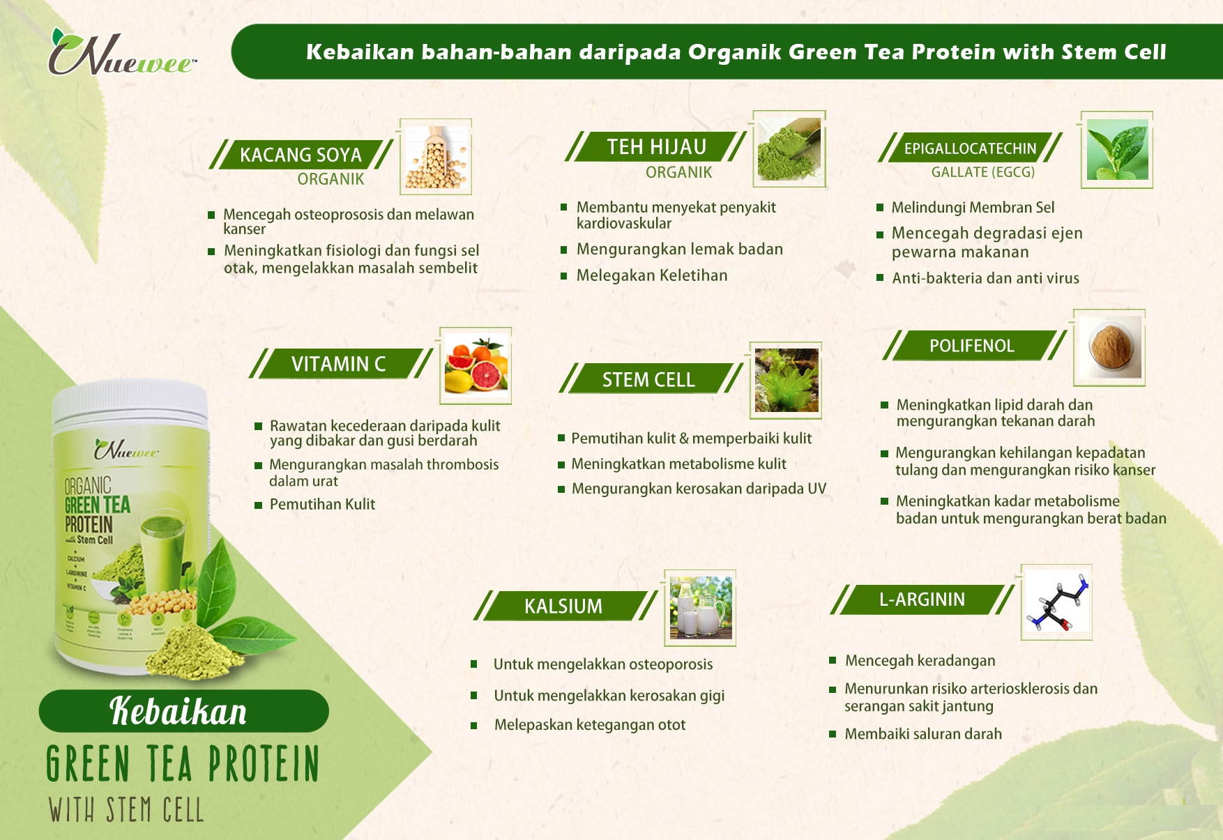 Ingredients-of-Nuewee-Organic-Green-Tea-Protein-with-Stem-Cell.jpg