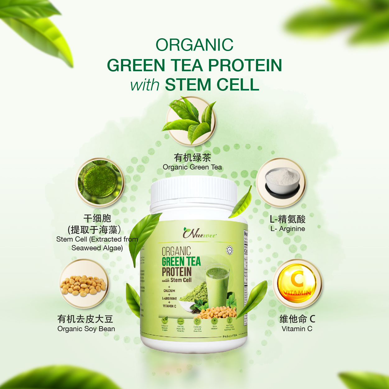 Nuewee-Organic-Green-Tea-Protein-New-1KG.jpg