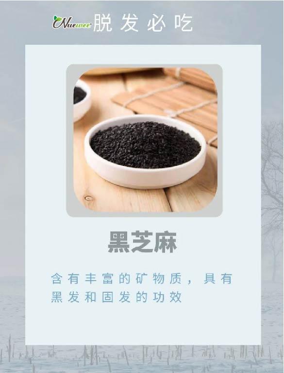 food_ingredient_health_prevent_decrease_hair_drop_healthy_health_lifestyle (6).jpg