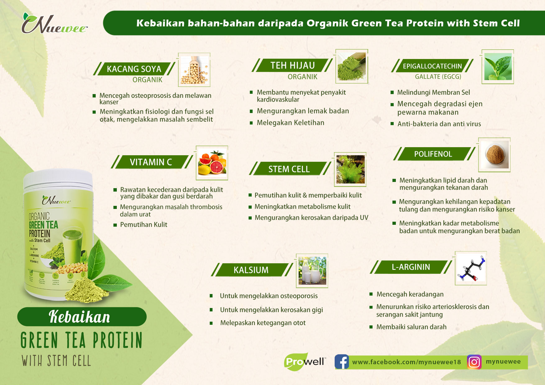 M ingredients of Nuewee Organic Green Tea Protein with Stem Cell.jpg